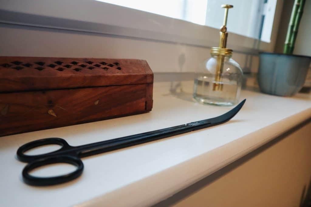 Terrarium scissors