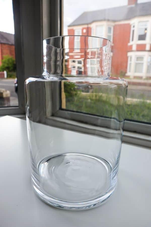 Glass terrarium container