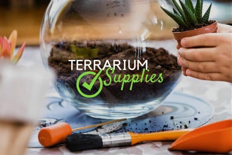 Terrarium Supplies