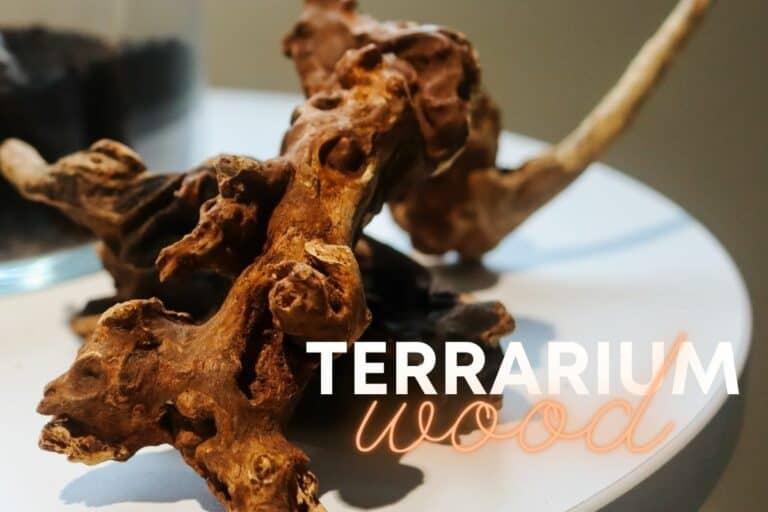 Terrarium Wood