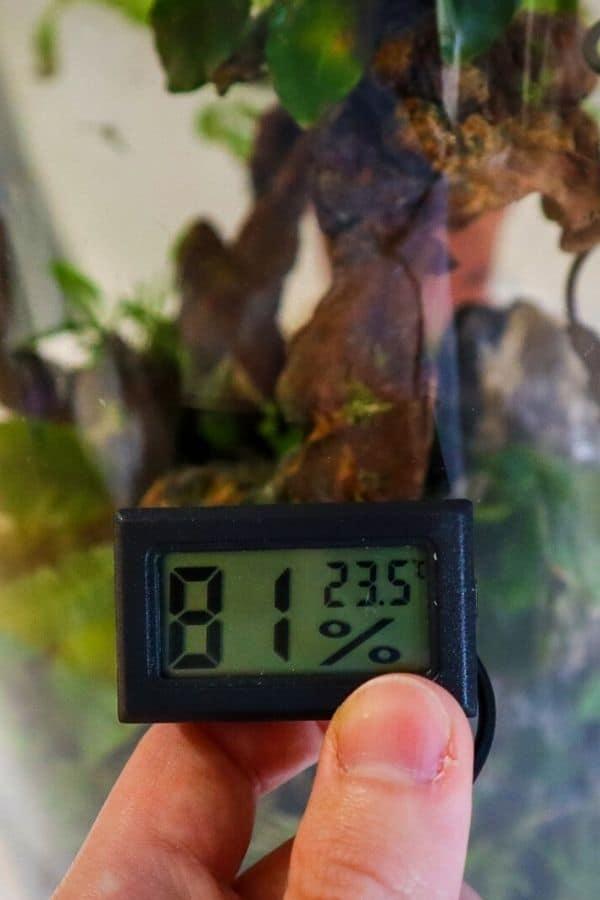 Terrarium humidity meter
