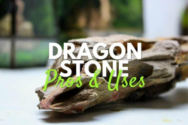 dragon stone (ohko stone)