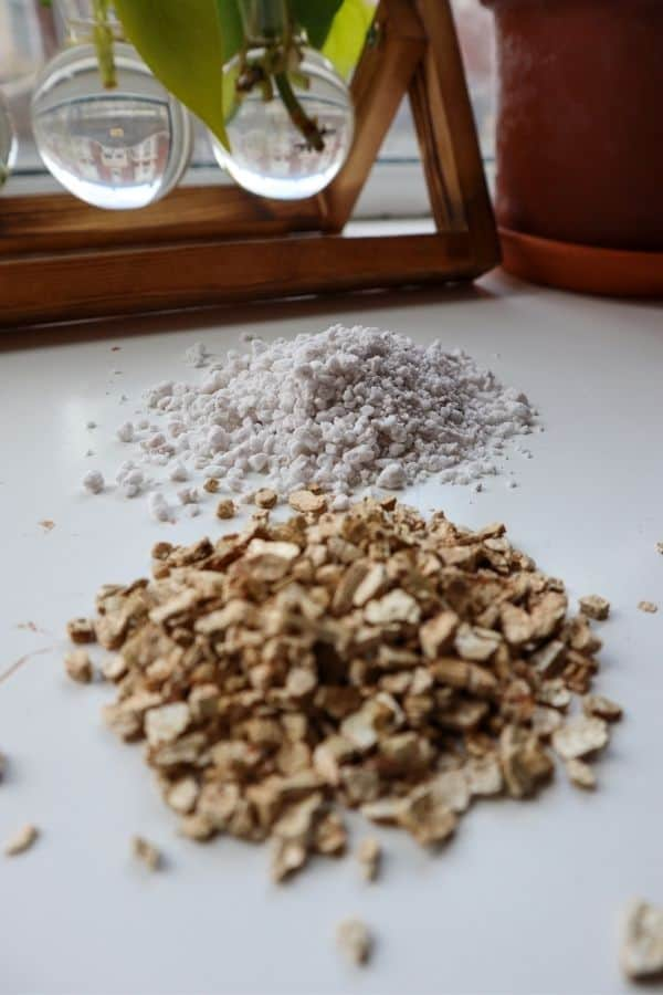 Perlite vs vermiculite