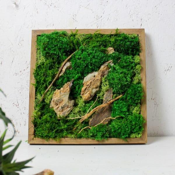 Spider Wood Moss Art
