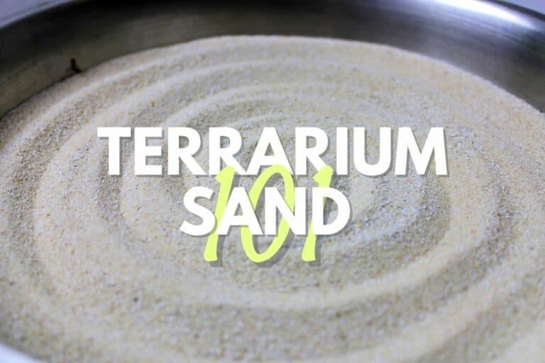 terrarium sand